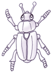 Beetle B&W - John Duffield duffield-design