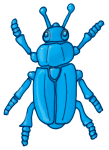 Beetle - Blue - John Duffield duffield-design
