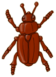 Beetle - Brown - John Duffield duffield-design