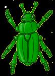 Beetle - Green - John Duffield duffield-design
