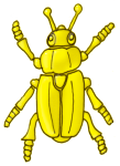 Beetle - Yellow - John Duffield duffield-design