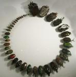Beetles ordered by size Bev Dunbar Maths Matters