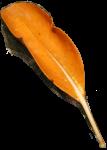 Orange Leaf Bev Dunbar Maths Matters