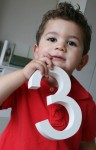 Bev Dunbar Maths Matters Resources-NUMBER Joey holds a 3