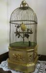 Bird in a Gilded Cage Bev Dunbar Maths Matters