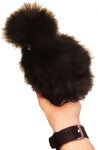 Black silkie chicken Bev Dunbar Maths Matters