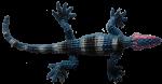 Blue lizard - toys - Bev Dunbar Maths Matters