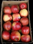 Box of 26 Apples Bev Dunbar Maths Matters