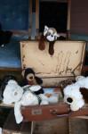 Box of antique toys Bev Dunbar Maths Matters