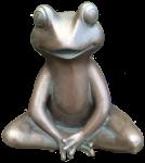 Bronze Frog - amphibian - Bev Dunbar Maths Matters