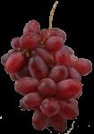 Bunch of Grapes Bev Dunbar Maths Matters