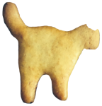 Cat Biscuit Bev Dunbar Maths Matters