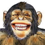 Chimpanzee Smiling - wild animal John Duffield duffield-design