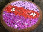 Circular Flower Bowl Bali Bev Dunbar Maths Matters