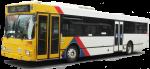 City Bus Adelaide Bev Dunbar Maths Matters