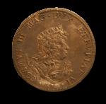 Cosimo Medici Coin Florence 1670 Bev Dunbar Maths Matters copy