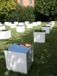 Cube Garden Wang Yun Venice Bev Dunbar Maths Matters
