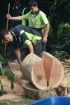Cut half a huge log 2 Bev Dunbar Maths Matters