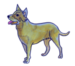 Cattle DOG - farm - pet John Duffield duffield-design