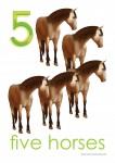 Farm Animals 5 Poster Bev Dunbar Maths Matters