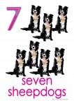 Farm Animals 7 Poster Bev Dunbar Maths Matters