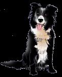 Farm Dog 18 kg - John Duffield duffield-design