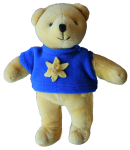 Favourite Toy Bear Bev Dunbar Maths Matters