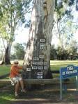 Flood Levels Renmark Sth Aust Bev Dunbar Maths Matters