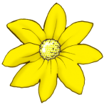 Flower Coloured - Yellow - John Duffield duffield-design