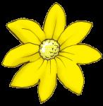Flower Coloured - Yellow - John Duffield duffield-design