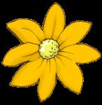 Flower - Orange - John Duffield duffield-design