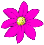 Flower - Pink - John Duffield duffield-design