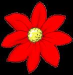Flower - Red - John Duffield duffield-design