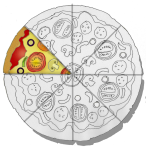 Fraction Pizza - 1 Eighth - John Duffield duffield-design