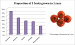 Fruit Column Graph - Bev Dunbar Maths Matters