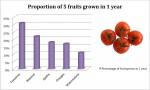 Fruit Column Graph - Bev Dunbar Maths Matters