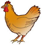 Gold Hen - farm animal - facing left John Duffield duffield-design