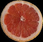 Grapefruit Half Bev Dunbar Maths Matters