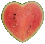 Heart-shaped watermelon Japan