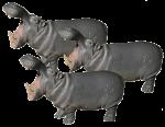 Hippo Thirds - 3 out of 3 hippos - Bev Dunbar Maths Matters