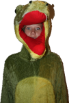 Jess Crocodile -dress up - party Bev Dunbar Maths Matters