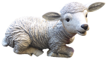 Lamb - farm animals - Bev Dunbar Maths Matters