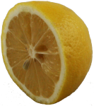 Lemon Half Bev Dunbar Maths Matters