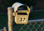 Letterbox Number 37 Bev Dunbar Maths Matters