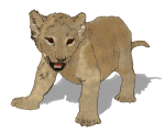 Lion Cub - John Duffield duffield-design