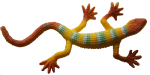 Long yellow striped toy lizard - Bev Dunbar Maths Matters