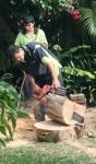 Making log quarters Bev Dunbar Maths Matters