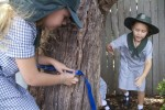 Measuring tree circumference - length - Bev Dunbar Maths Matters