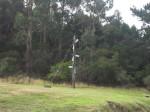 Model Convict semaphore Tree Port Arthur Tasmania Bev Dunbar Maths Matters