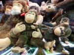 Monkeys only $45 each Bev Dunbar Maths Matters